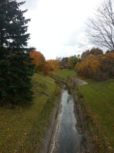 North Scarborough Green Loop East Highland Creek 4