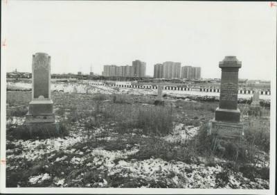 Christie's Methodist Cemetery, 1974