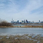 Scenes From Tommy Thompson Park and The Leslie Street Spit