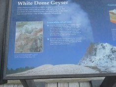 Learning about White Dome Eeyser