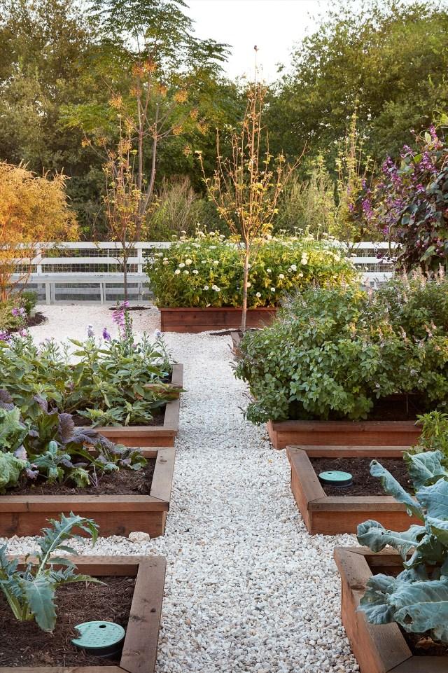 Raised Vegetable Garden Design Layout