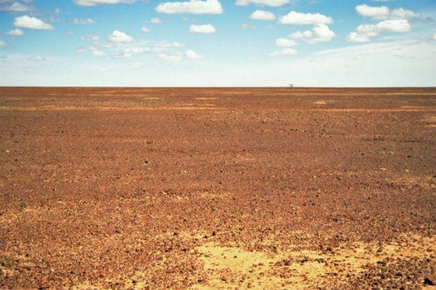 140. Sturts Stony Desert 8PS900