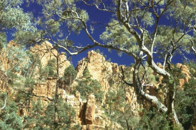 Edeowie cliffsC