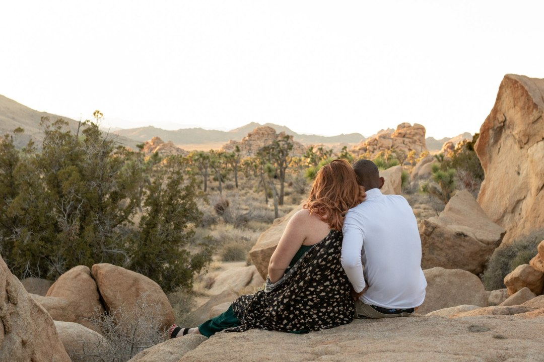 A couple sits and looks out over a field of Joshua Trees for their engagement photos