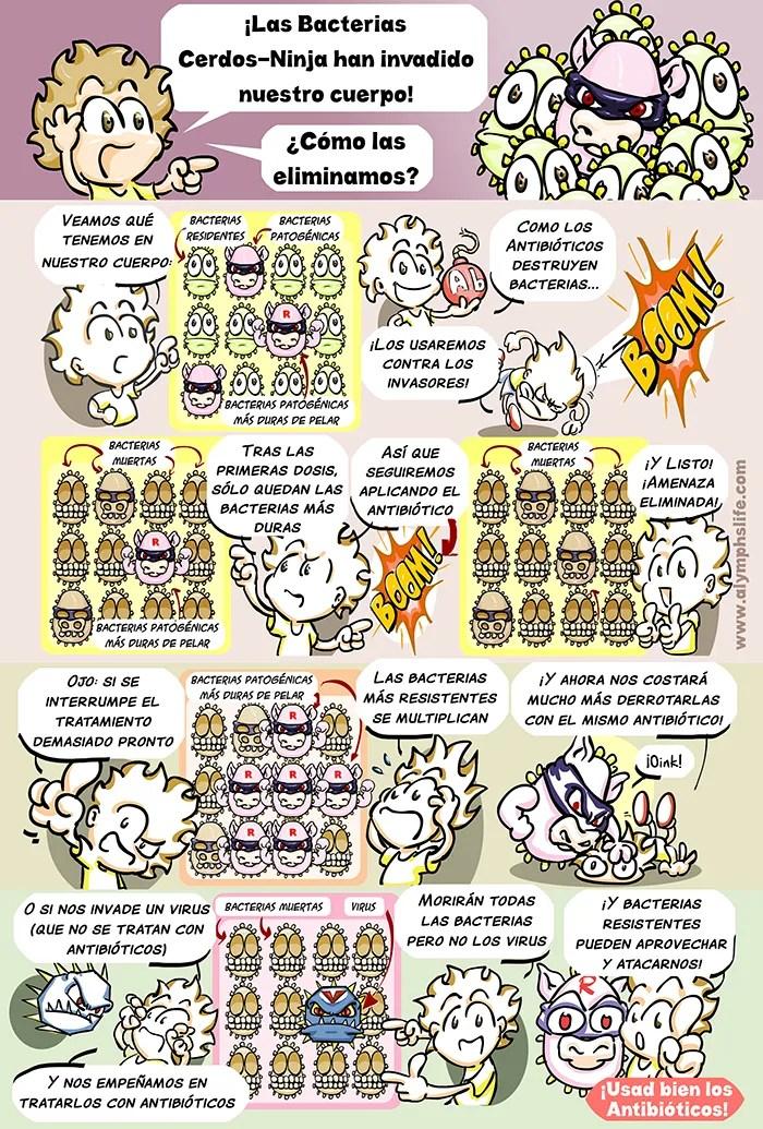 antibióticos, cerdos ninja y resistencias