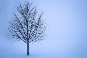 light therapy for depression, Coping With Seasonal Affective Disorder (SAD), seasonal depression, winter depression, sad symptoms,
