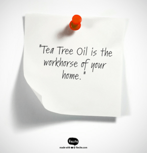 Tea Tree, tea tree uses, tea tree oil acne, tea tree oil dandruff, melaleuca oil