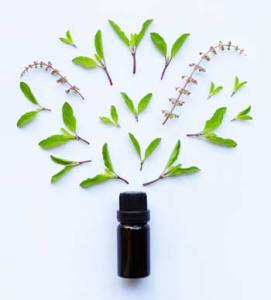 Why Aromatherapy, using pure essential oils,