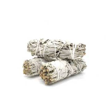 White Sage Smudge Stick, Purify Air, Antibacterial, Antimicrobial