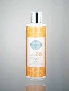 new scentsy skin body wash 2017