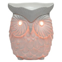 scentsy warmer whoot