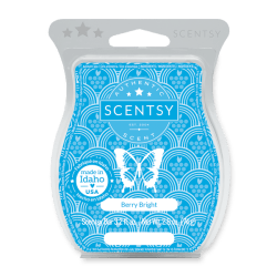 https://scentsoilswarmers.com/wp-content/uploads/2020/10/be-merry-scentsy-wax-bar.png