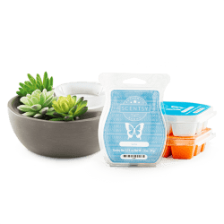 scentsy system 40 warmer bundle