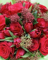 Red Rose & Tulip