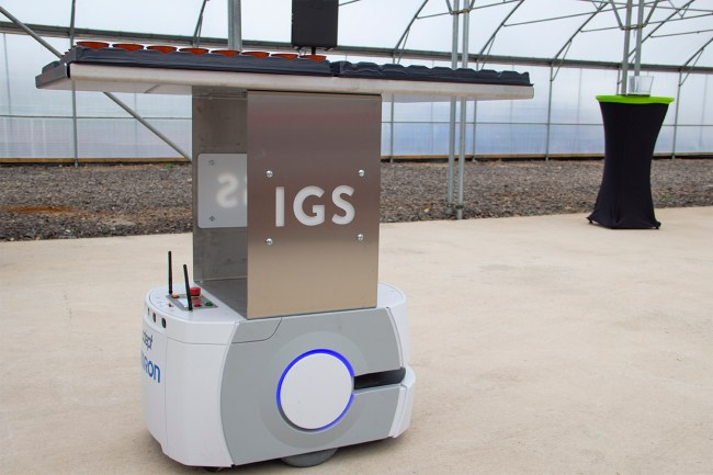 A small robotic trolley delivering herbs grown in Scotland's first vertical farm