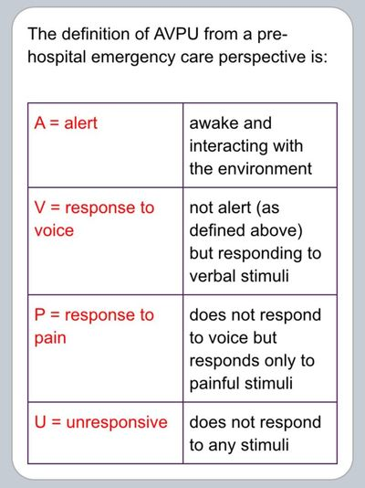 ASSESSMENT TIPS  SCFD EMS
