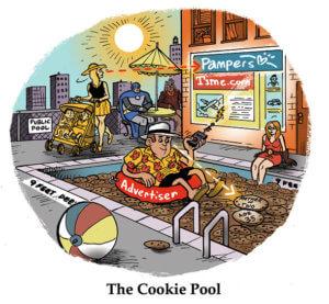 Marketing bij Jumbo: de cookie pool
