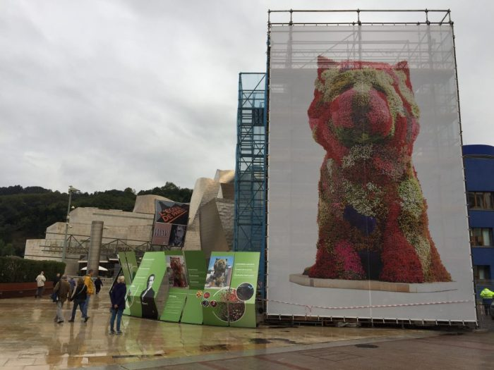 """Jeff Koons' """"Puppy"""" at the Guggenheim entrance: 12.4 m high with 38,000 plants. Being re-vegetated when we visited."""