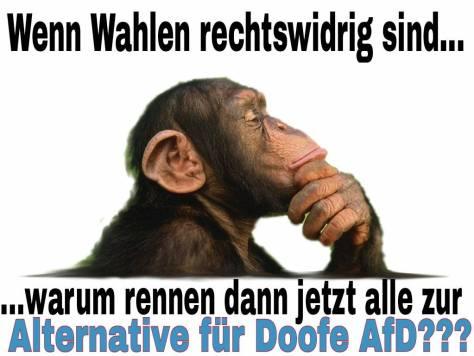 affe-wahlen