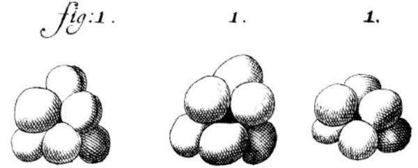 Small Things Considered: Did van Leeuwenhoek Observe Yeast