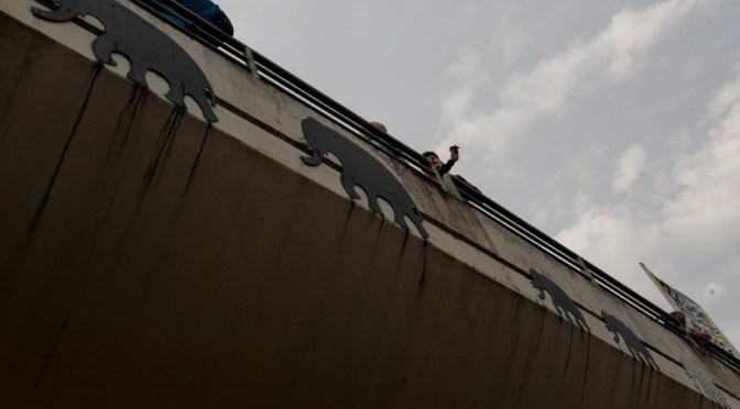 "Demonstration für den Erhalt des ""Elefantensteg"""