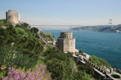 istanbul-398-2_b