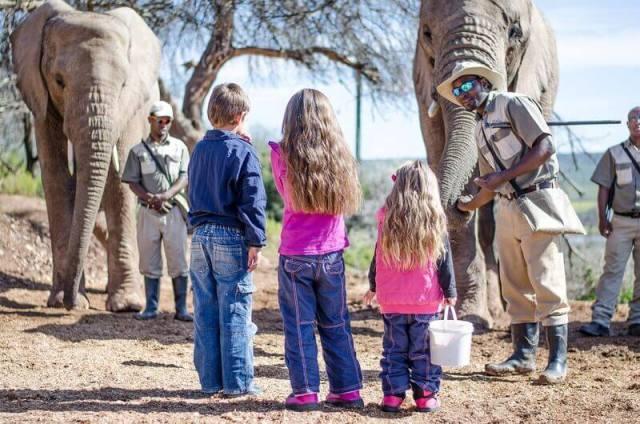 buffelsdrift game lodge accommodation in oudtshoorn activities 11 - Traumhafte Kapregion
