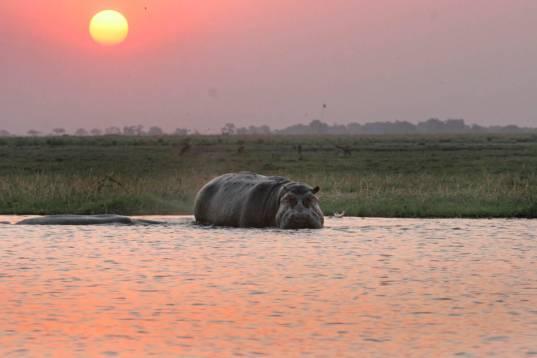 Namibia und Botswana hautnah