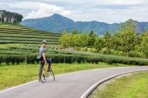 Men riding a bicycle at Singha park Chiang Rai, Thailand.