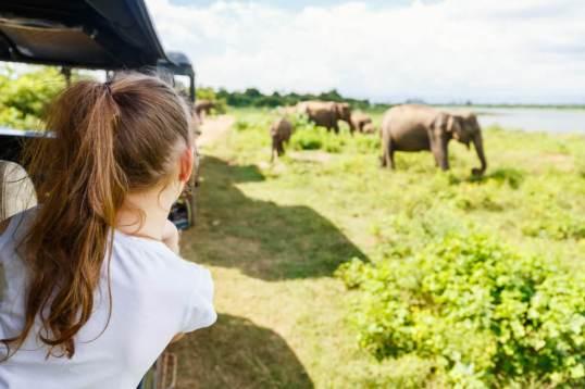 shutterstock 1022606053 - Familienreise Botswana