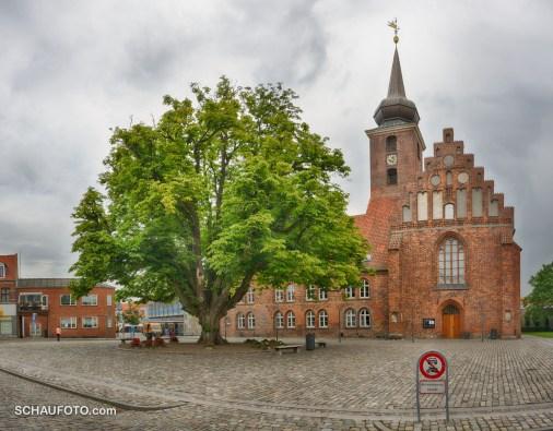 Stadt mit Geschichte - Kloster mit Baumriesen