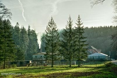 """Die """"Meuschkenmühle"""" mit Ponyverleih"""