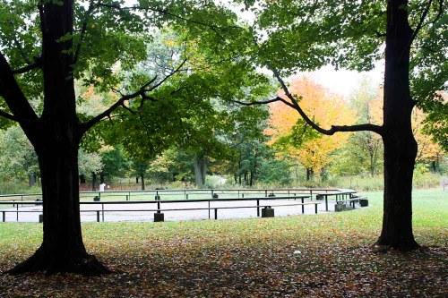 High Park Labyrinth 1