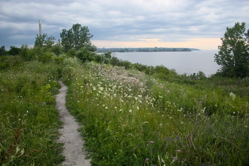 Tommy Thompson Park-3