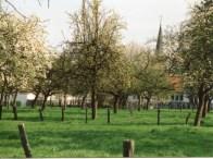 Dorfbilder Mai 1991036