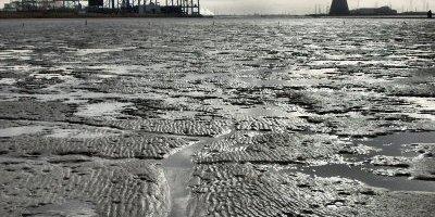 Water, zand en slib in het Schelde-estuarium