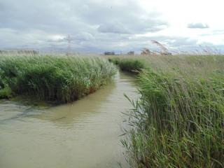 schorrand-galgeschoor-hoogwater
