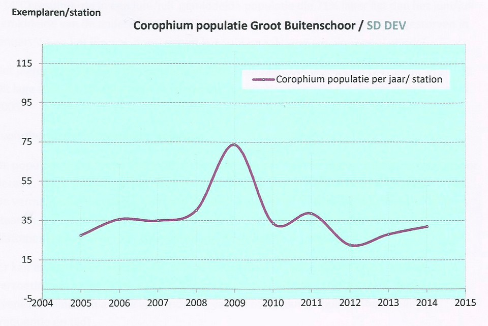 slikgarnaal-populatie-gbs--hug-van-beek