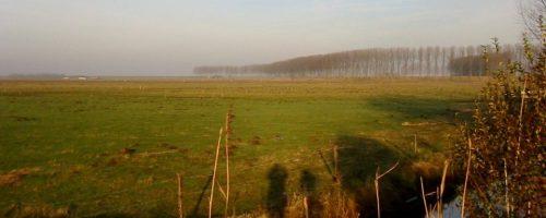PVV: Toeristenterp Hedwige botst met beoogde natuur