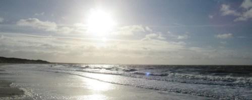 Natuurherstel in Noordzee krijgt flinke boost door miljoenenbijdrage