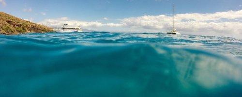 De verdwenen platen van de Panthalassa Oceaan