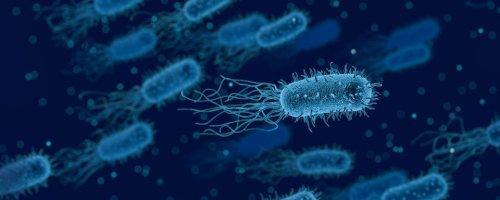 Zombie-microben in diepzeesedimenten zijn te futloos om aan hun eten te geraken