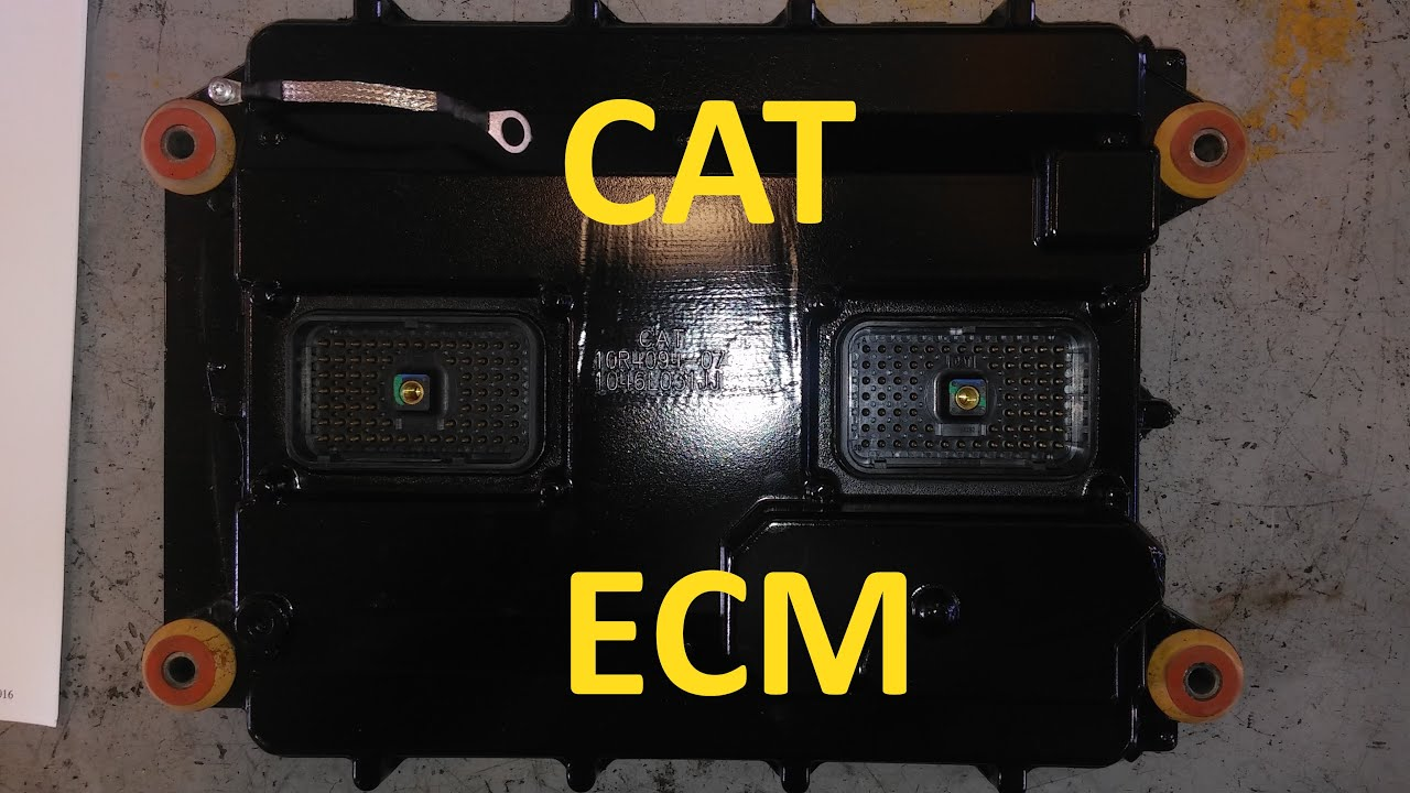 Cat 3126 Ecm Wiring Diagram Wedocable