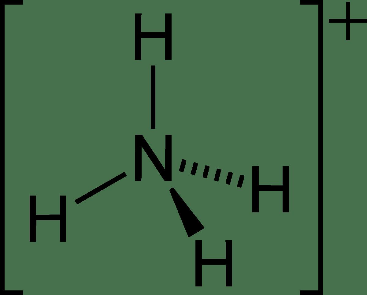 hight resolution of lewi diagram encyclopedium