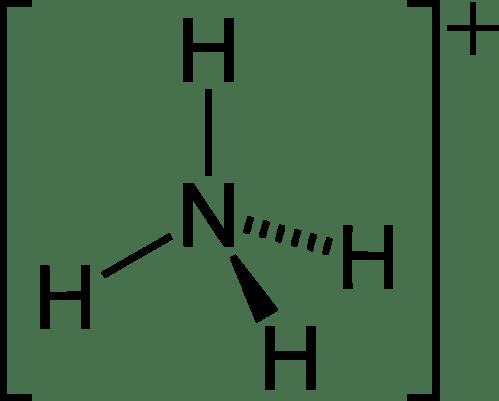 small resolution of lewi diagram encyclopedium