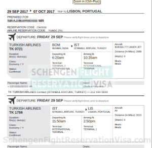 Flight Reservation OR Flight itinerary Sample