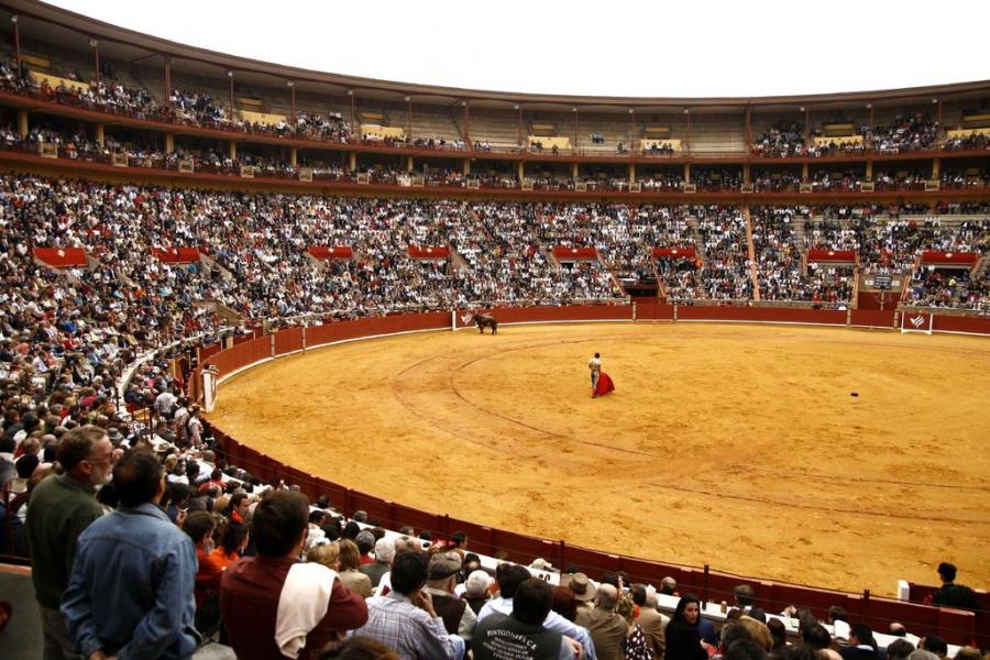 Top 10 Places to Visit in Spain Plaza de Toros