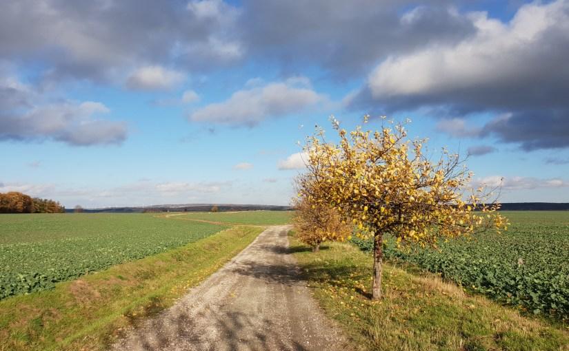 Thüringer Herbst
