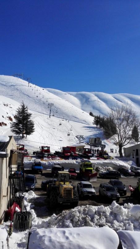 17 - Libanon (Medium)