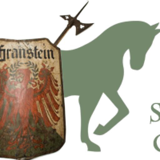Maso scudo Granstein